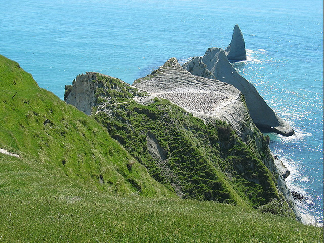 by olaf sc on Flickr.Cape Kidnappers is a headland at the southeastern extremity of Hawke Bay on the east coast of New Zealand's North Island.