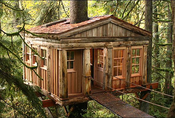 Temple of the Blue Moon Treehouse, Seattle, Washington