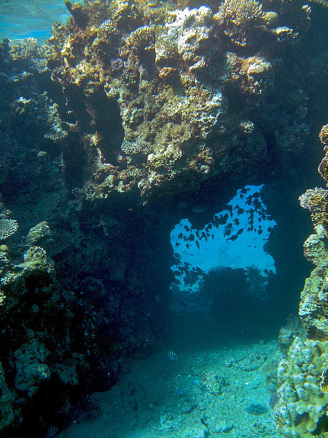 Underwater passage in The Red Sea, near Eilat, Israel