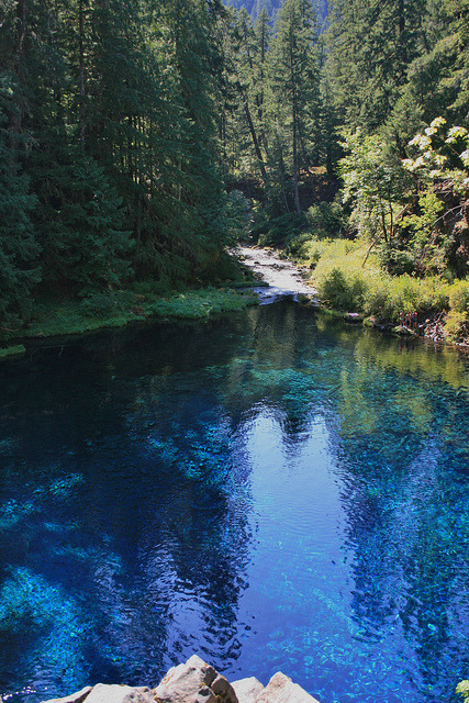Tamolitch Pool, the place where the McKenzie River naturally reappears from its underground channel into a crystal blue pool in Oregon, USA
