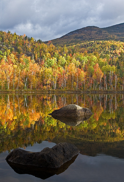Adirondack Autumn, New York, USA