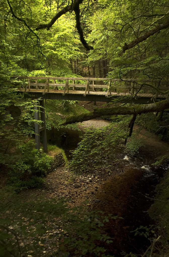 Forest  Bridge, Cawdor Castle, Scotland