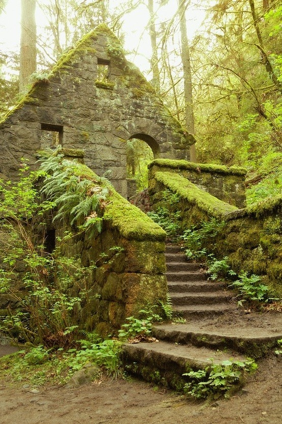 Stone House, Forest Park, Portland, Oregon