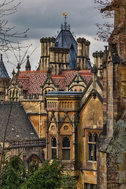 "genoula:"" Tyntesfield House by – Roger Nichol on Flickr."""