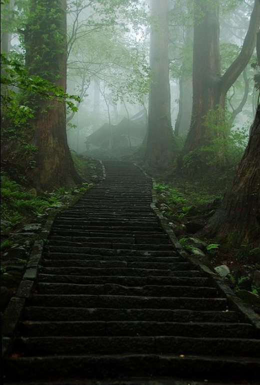 Misty path to Dewa Sanzan temples, Japan