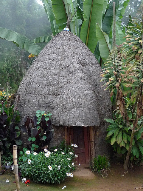 Typical hut of a Dorze village in Gughe Mountains, Ethiopia