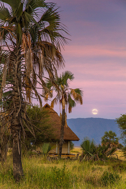 Setting moon in Lake Manyara National Park, Tanzania