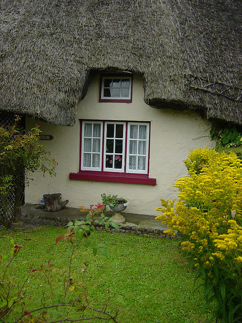 The cozy irish cottage