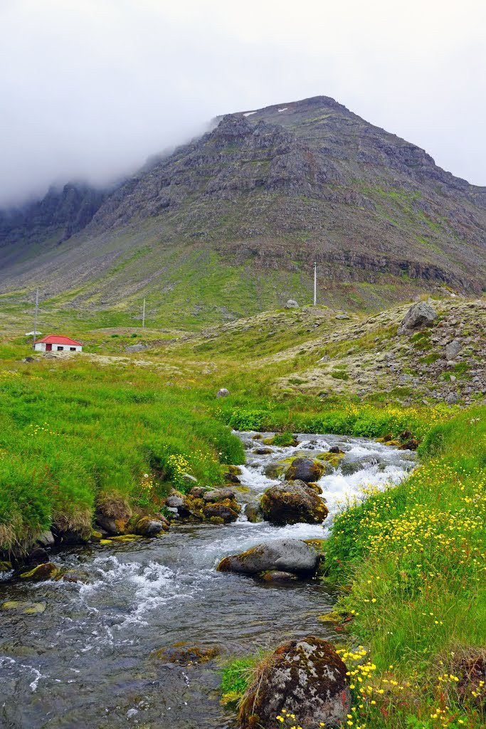 Freshwater streams of the Westfjords / Iceland