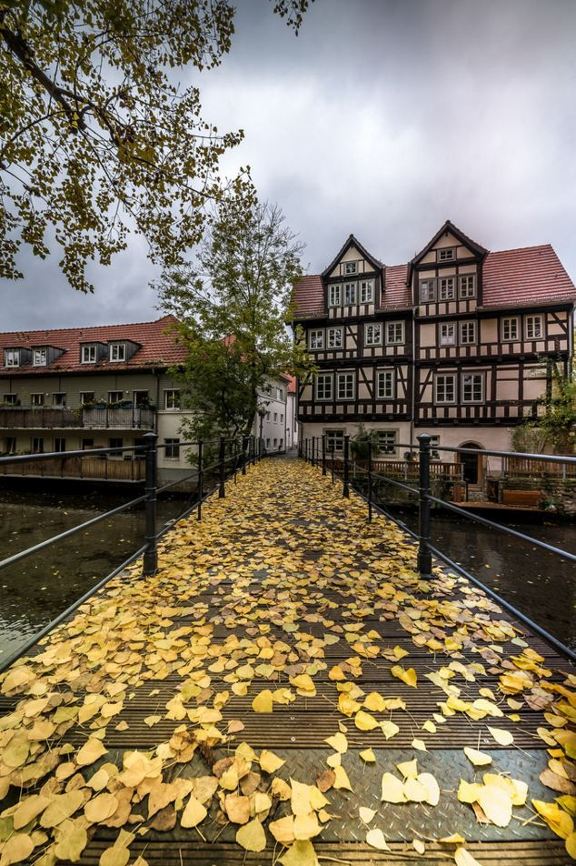 End of autumn, Erfurt / Germany